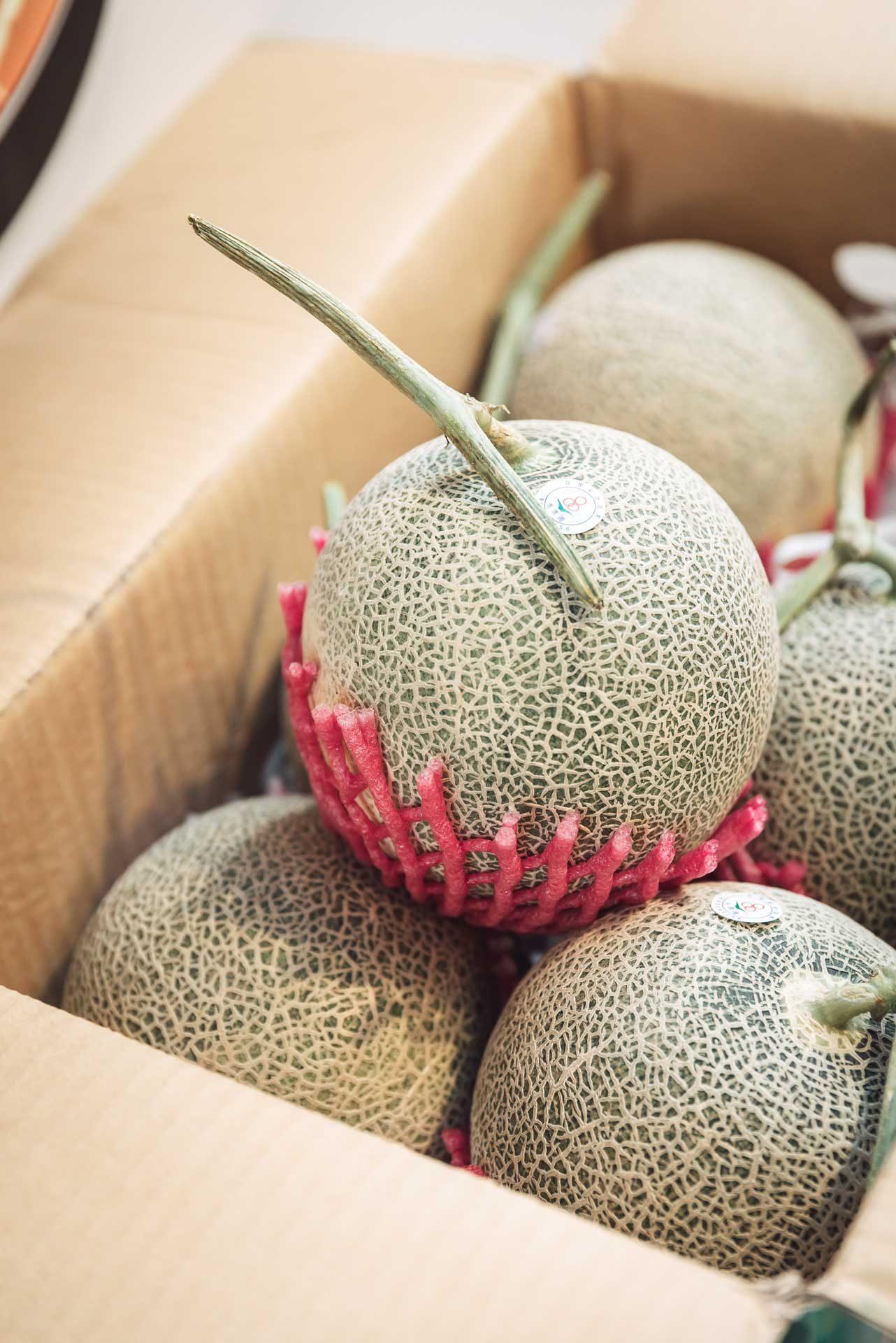 焦糖公園店內所採用的新鮮特選哈密瓜